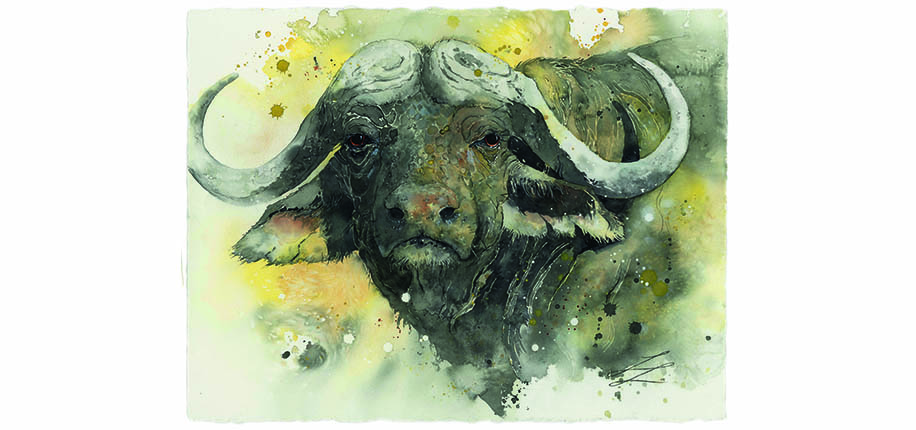 Lars Kruse | Büffel